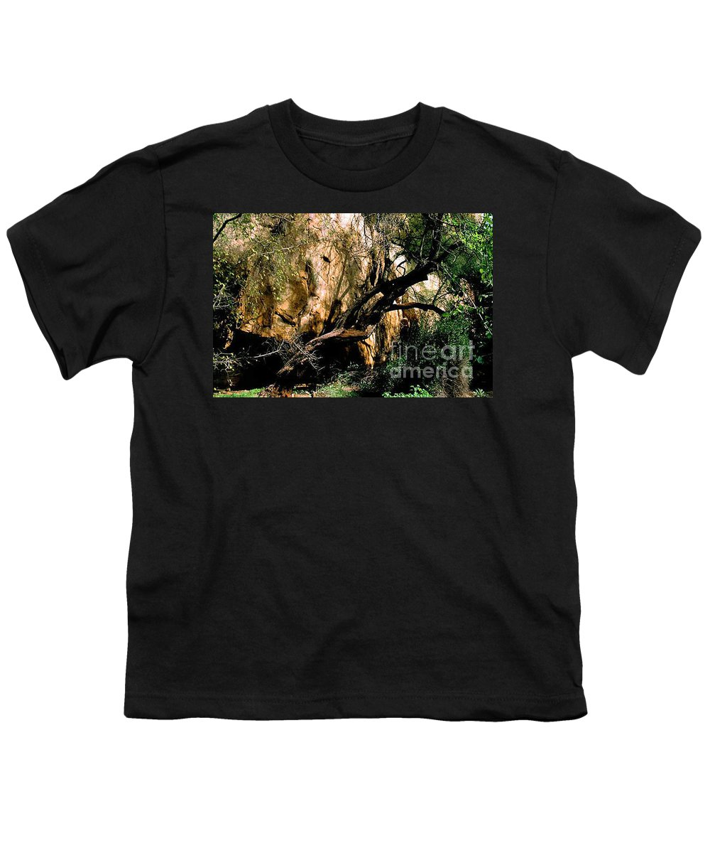 Trees Youth T-Shirt featuring the photograph Old Tree by Kathy McClure