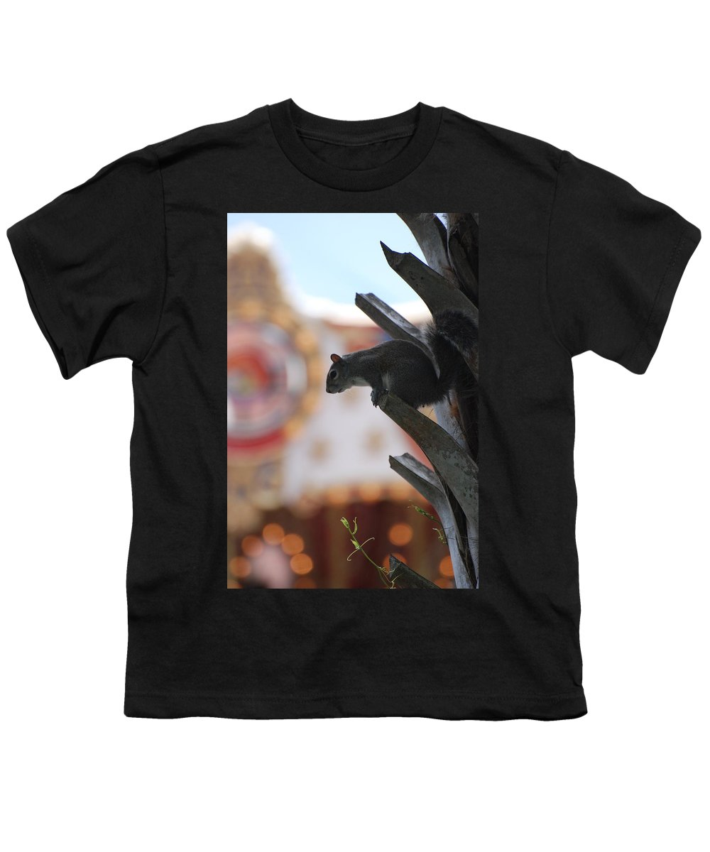 Squirrel Youth T-Shirt featuring the photograph Ready To Jump by Rob Hans