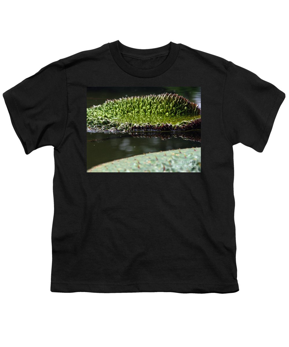 Lillypad Youth T-Shirt featuring the photograph Ready To Spread by Amanda Barcon