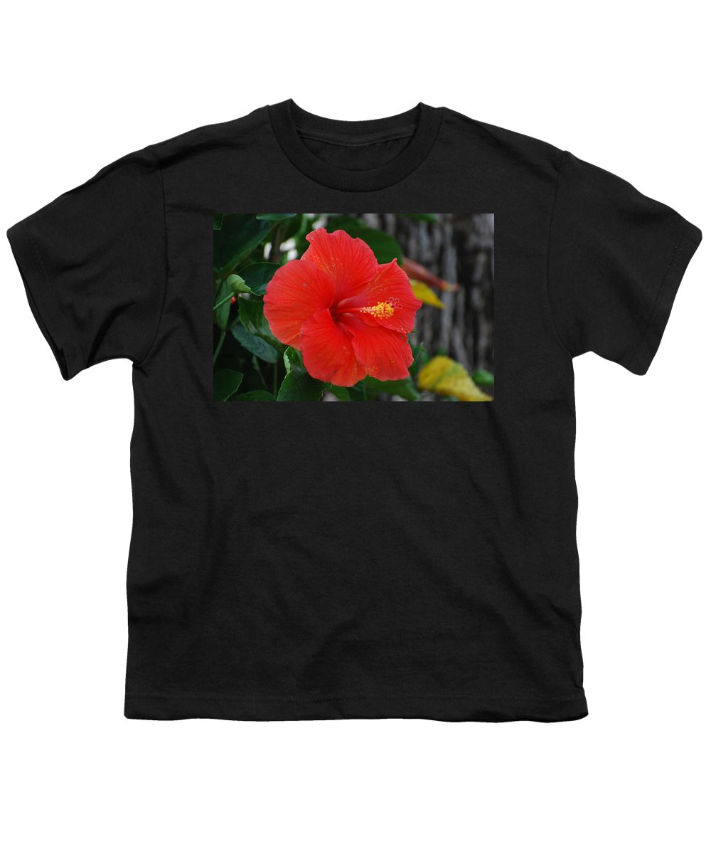 Flowers Youth T-Shirt featuring the photograph Red Flower by Rob Hans