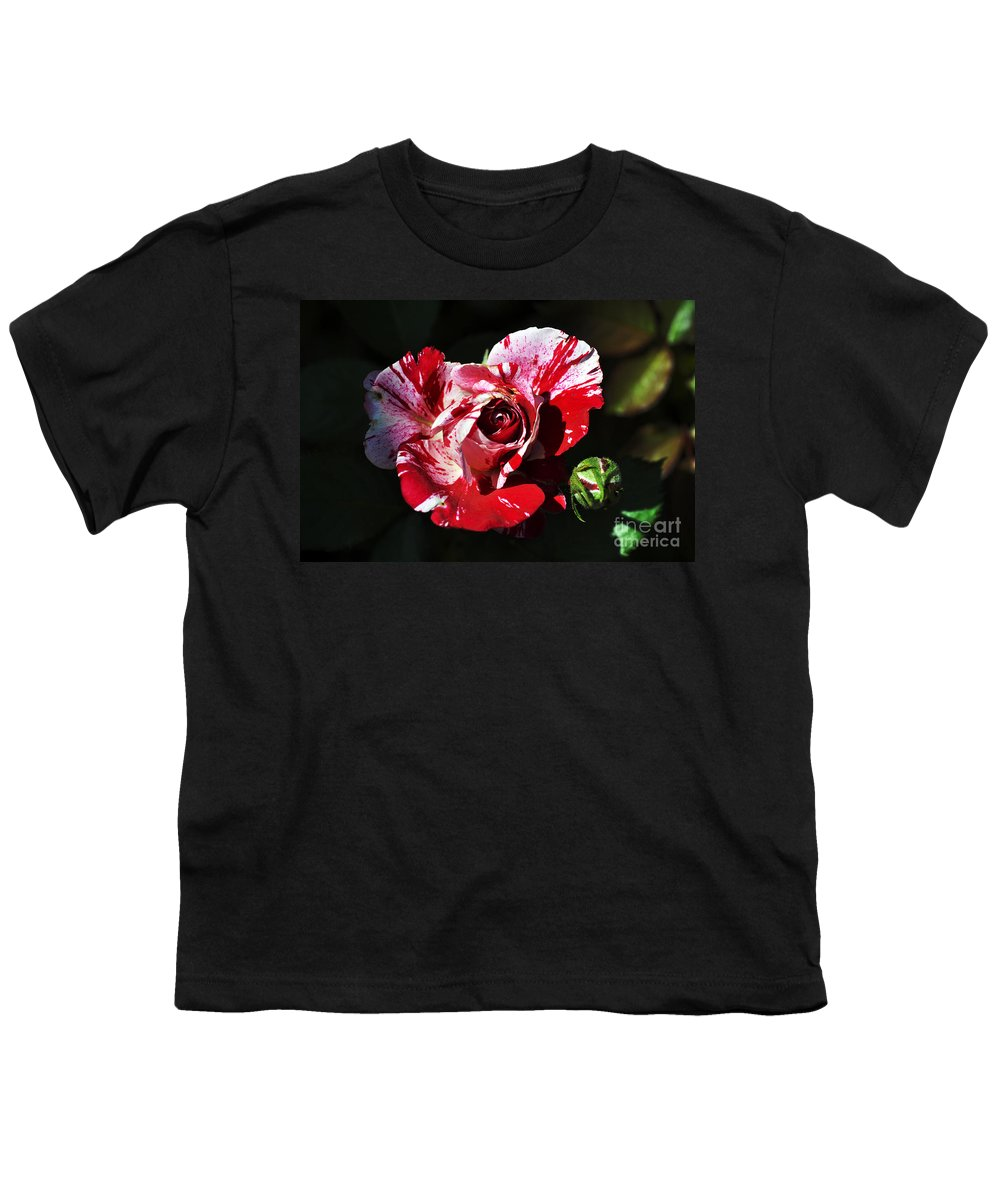 Clay Youth T-Shirt featuring the photograph Red Verigated Rose by Clayton Bruster