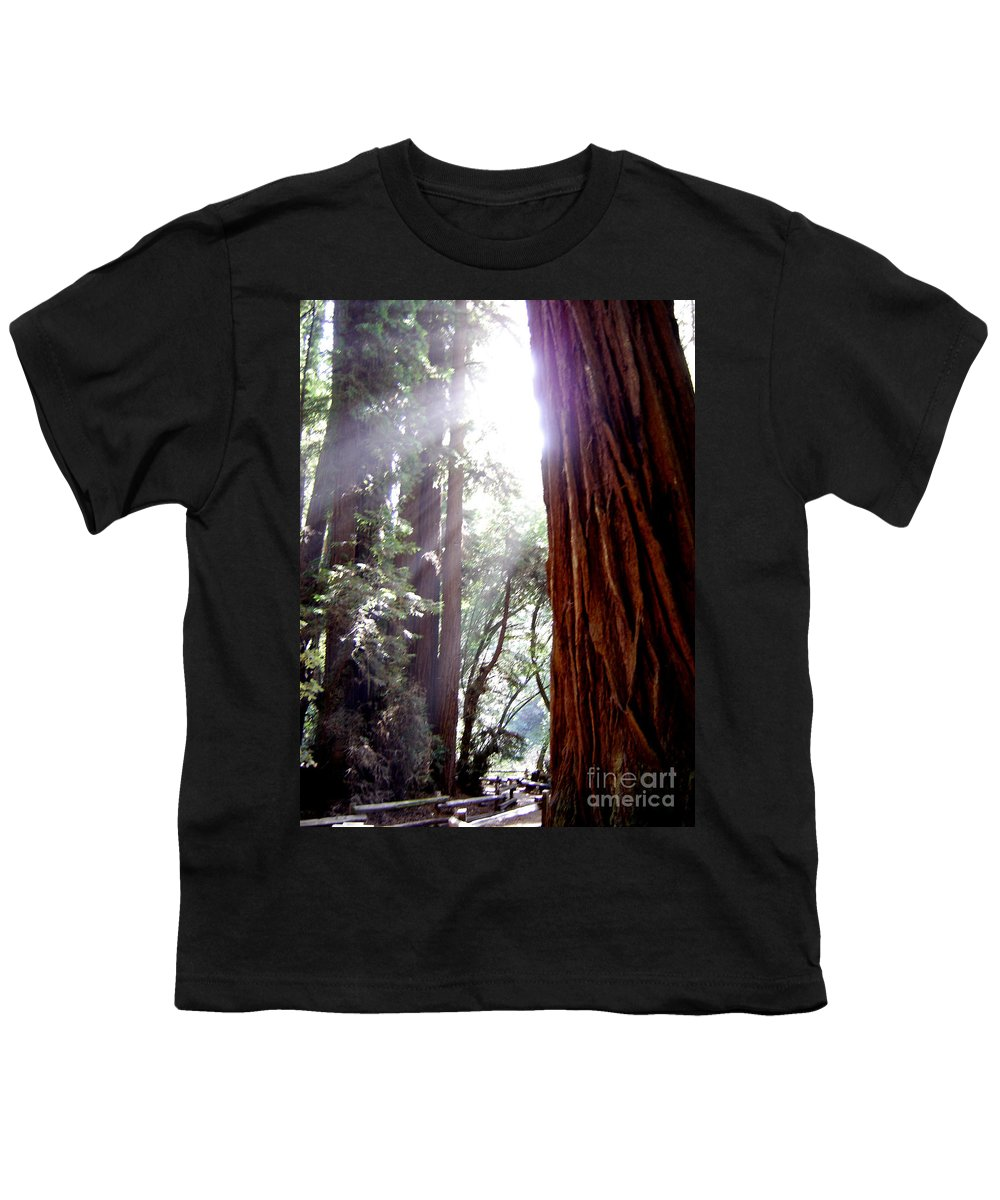 Redwoods Youth T-Shirt featuring the photograph Redwood Sunlight by Mary Rogers