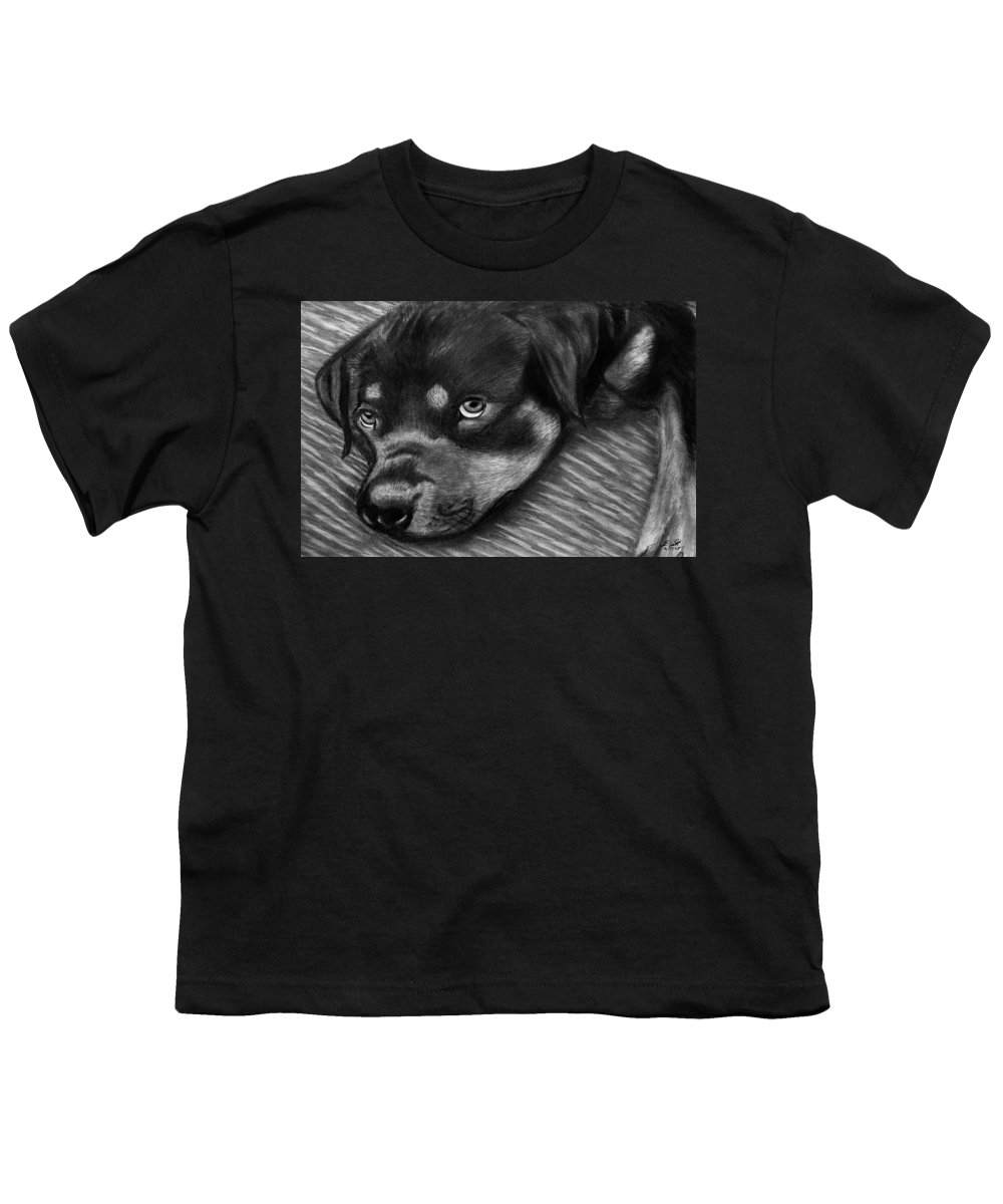 Rot Wilier Youth T-Shirt featuring the drawing Rotty by Peter Piatt