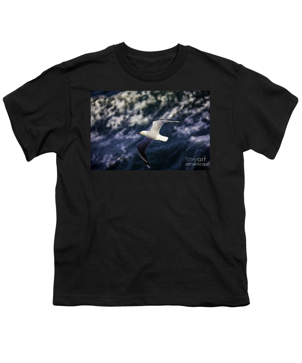 Seagull Youth T-Shirt featuring the photograph Seagull In Wake by Sheila Smart Fine Art Photography
