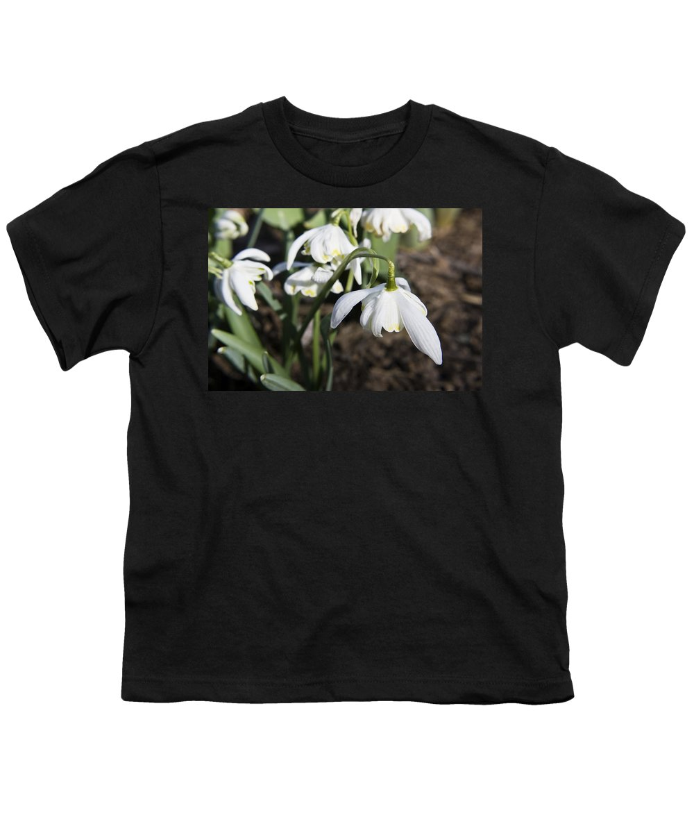 Snowdrops Youth T-Shirt featuring the photograph Snowdrops by Teresa Mucha