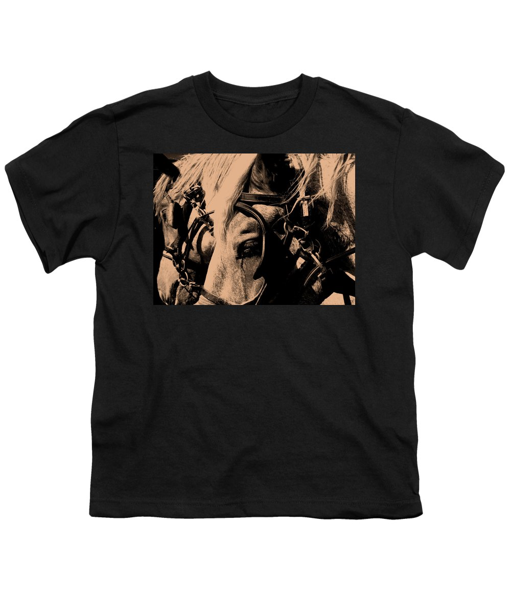 Horse Youth T-Shirt featuring the photograph Stage Coach Horses by Wayne Potrafka