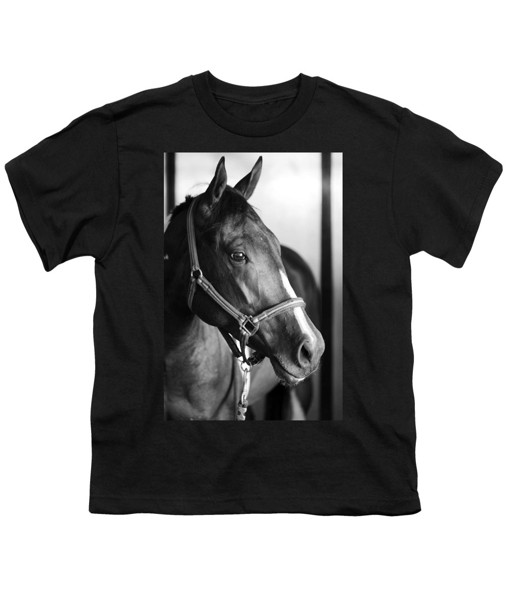 Horse Youth T-Shirt featuring the photograph Horse And Stillness by Marilyn Hunt