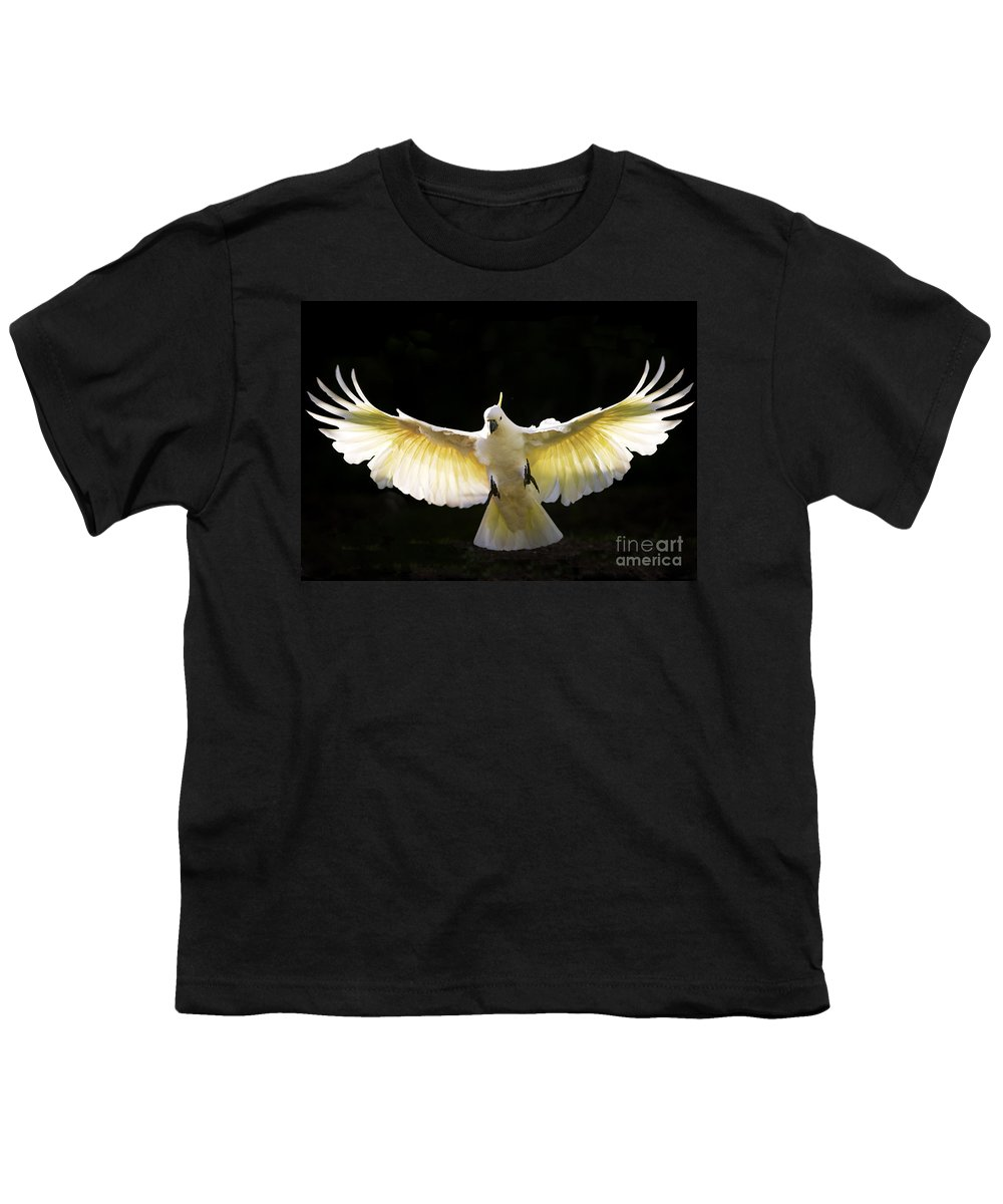 Sulphur Crested Cockatoo Australian Wildlife Youth T-Shirt featuring the photograph Sulphur Crested Cockatoo In Flight by Sheila Smart Fine Art Photography