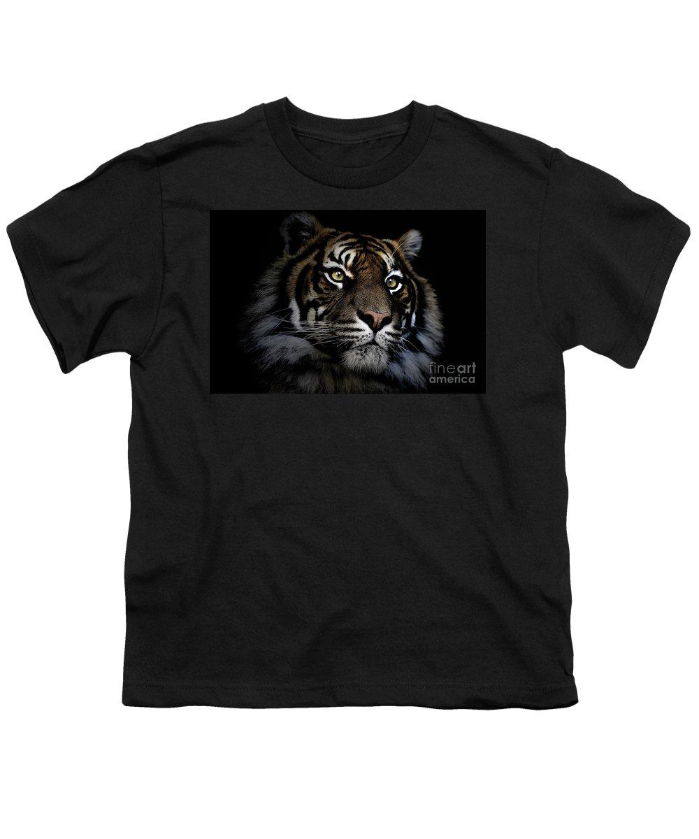Sumatran Tiger Wildlife Endangered Youth T-Shirt featuring the photograph Sumatran Tiger by Sheila Smart Fine Art Photography