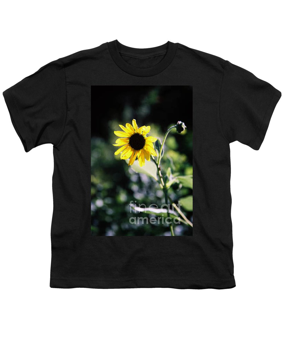 Sunflower Youth T-Shirt featuring the photograph Summer Sunshine by Kathy McClure