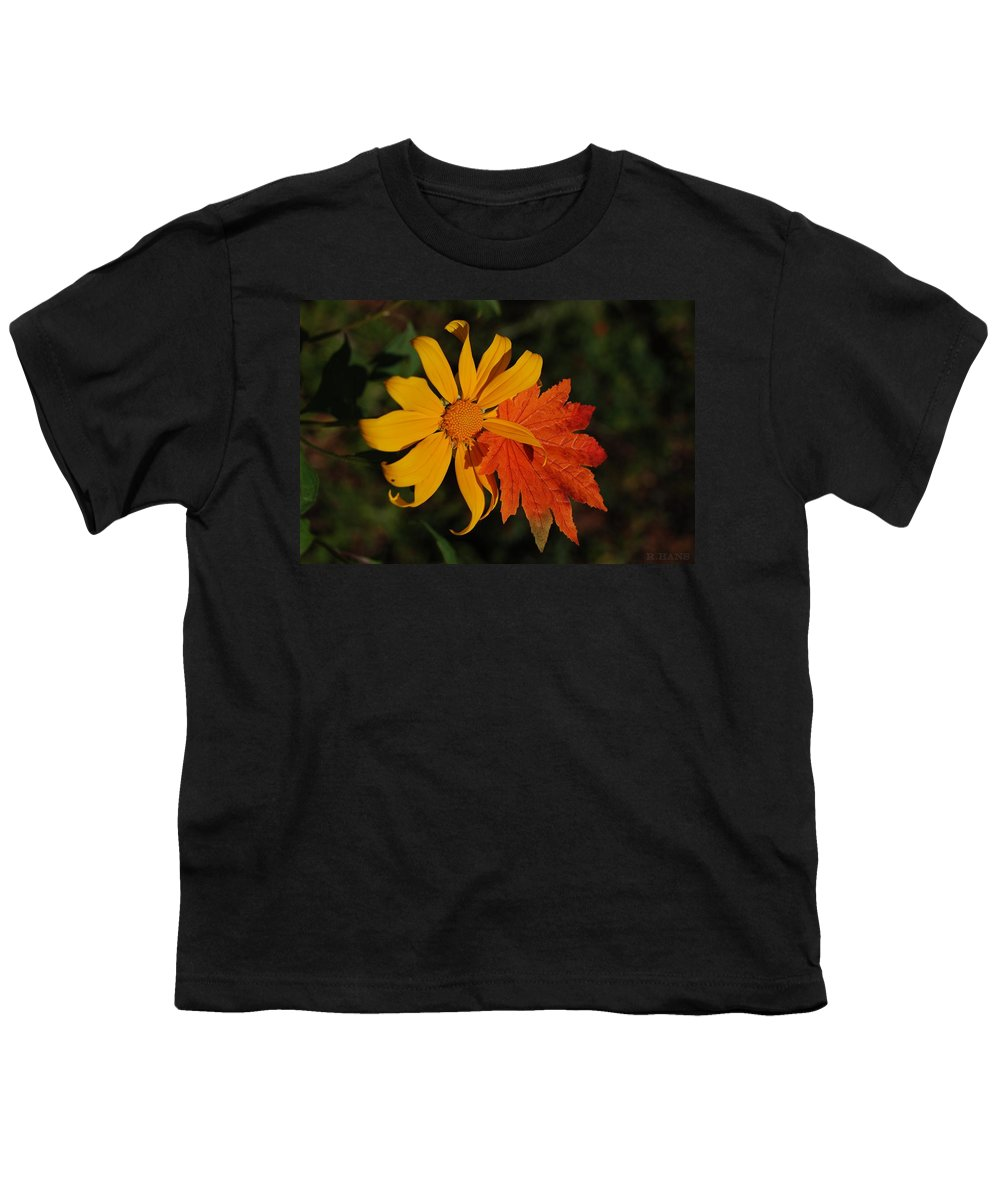 Pop Art Youth T-Shirt featuring the photograph Sun Flower And Leaf by Rob Hans
