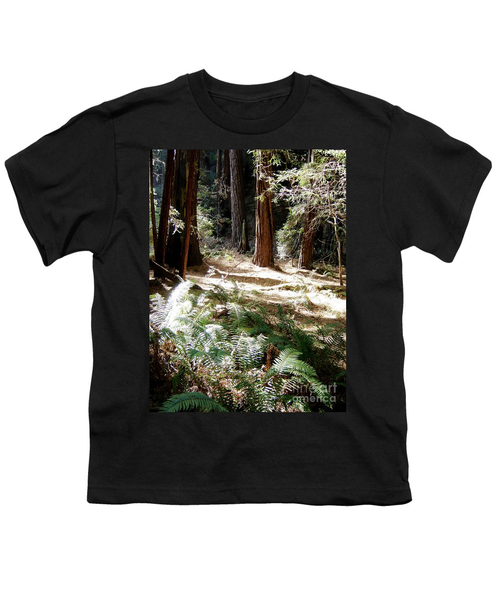 Sunlight Youth T-Shirt featuring the photograph Sunlight On Path by Mary Rogers