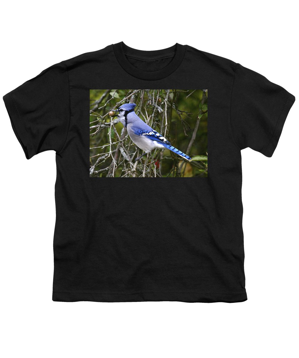 Bird Youth T-Shirt featuring the photograph The Gathering by Robert Pearson