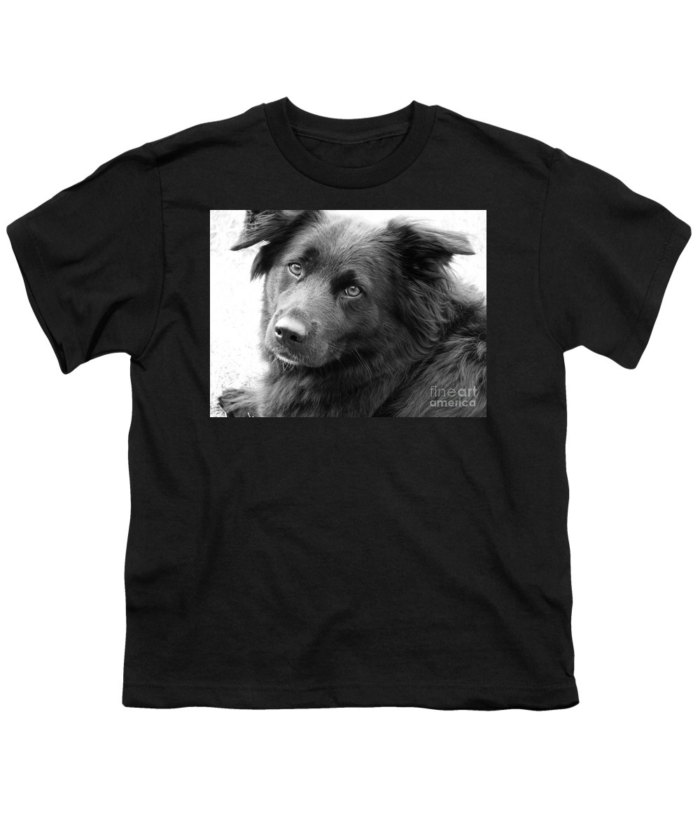 Dog Youth T-Shirt featuring the photograph Thinking by Amanda Barcon