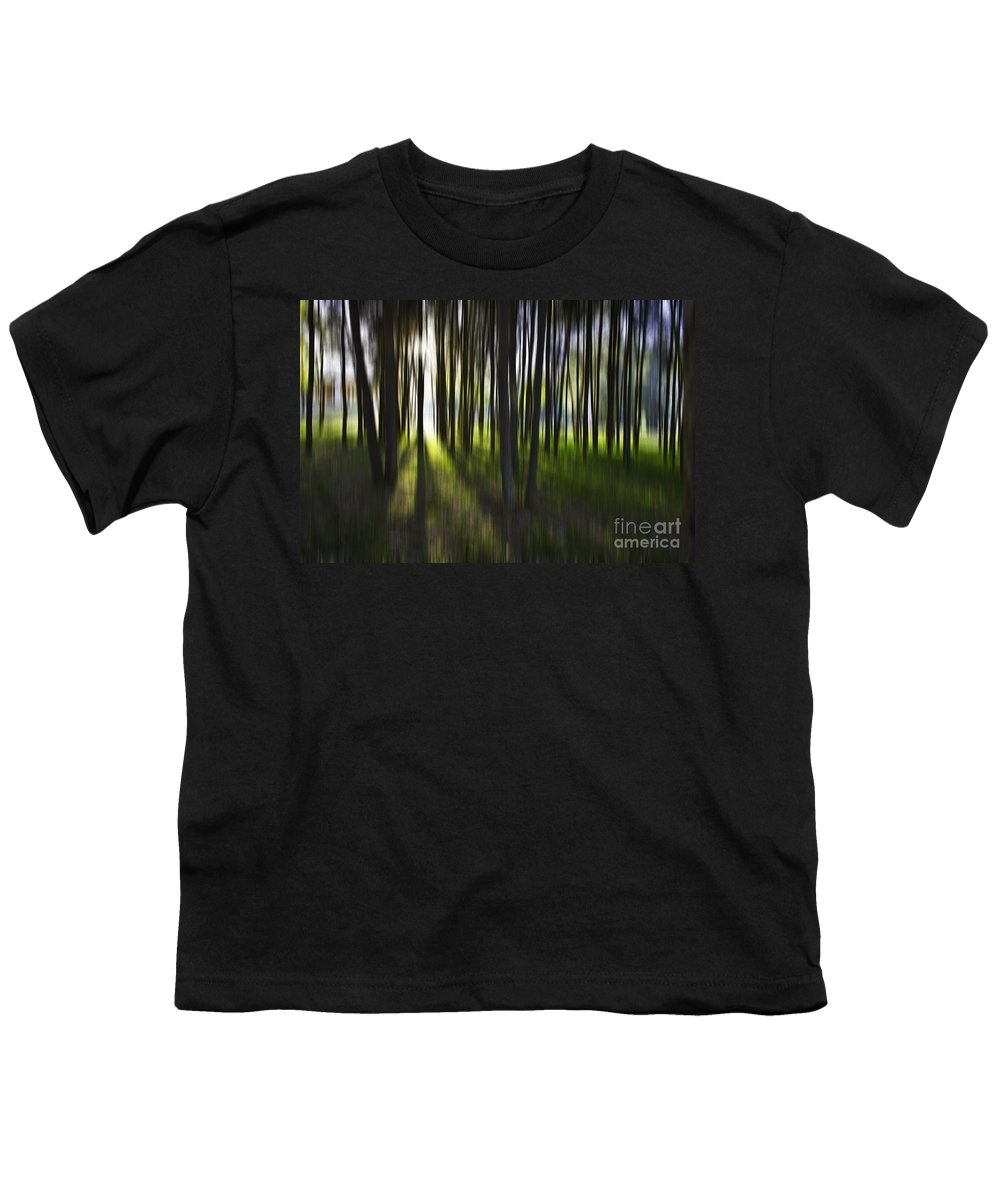 Trees Abstract Tree Lines Forest Wood Youth T-Shirt featuring the photograph Tree Abstract by Avalon Fine Art Photography