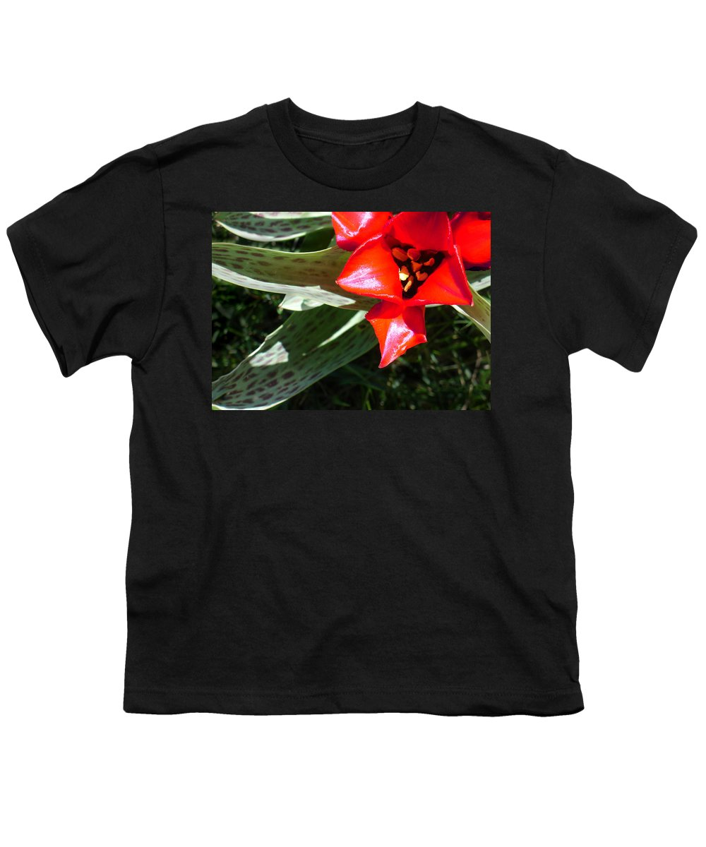 Tulip Youth T-Shirt featuring the photograph Tulip by Steve Karol