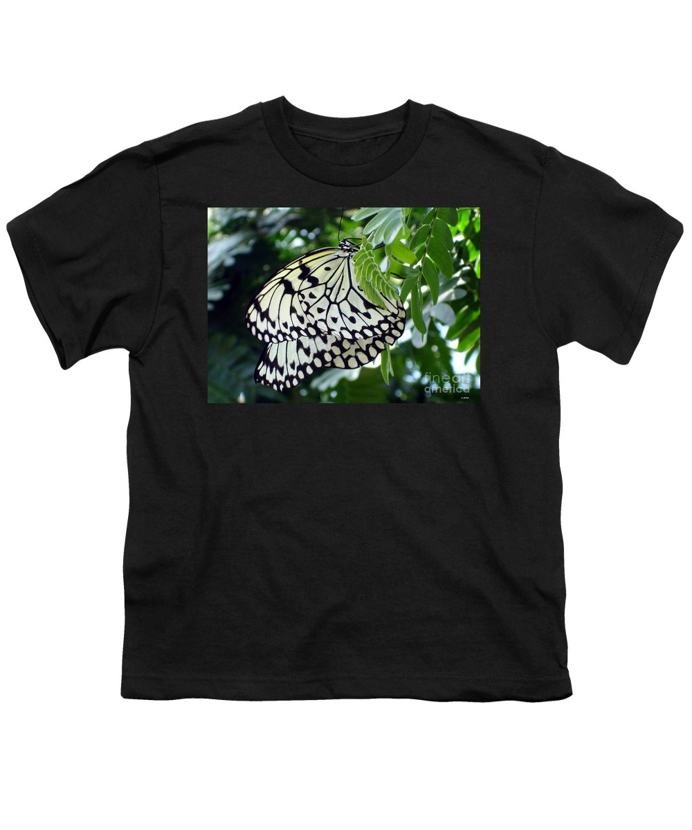 Butterfly Youth T-Shirt featuring the photograph Zebra In Disguise by Shelley Jones