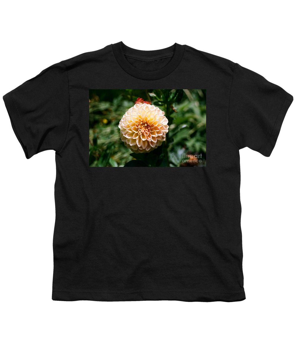 Zinnia Youth T-Shirt featuring the photograph Zinnia by Dean Triolo