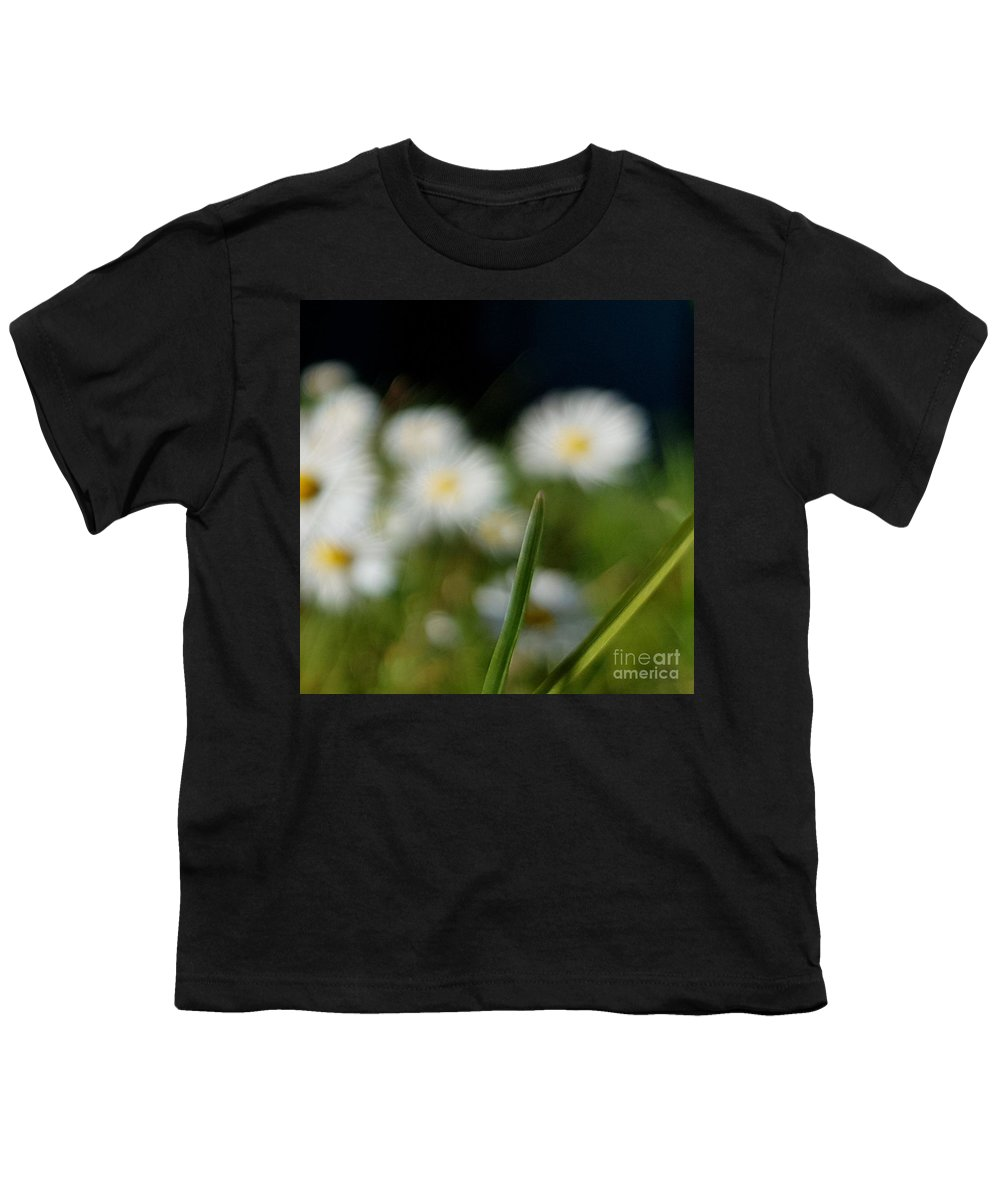 Youth T-Shirt featuring the photograph Daisy Landscape by Paola Baroni