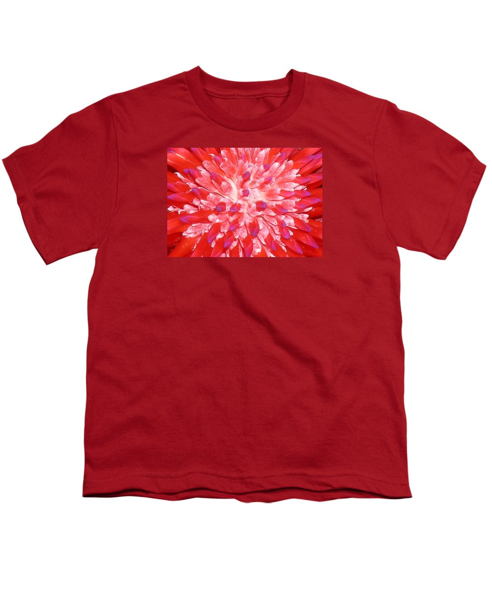 Hawaii Iphone Cases Youth T-Shirt featuring the photograph Molokai Bromeliad by James Temple