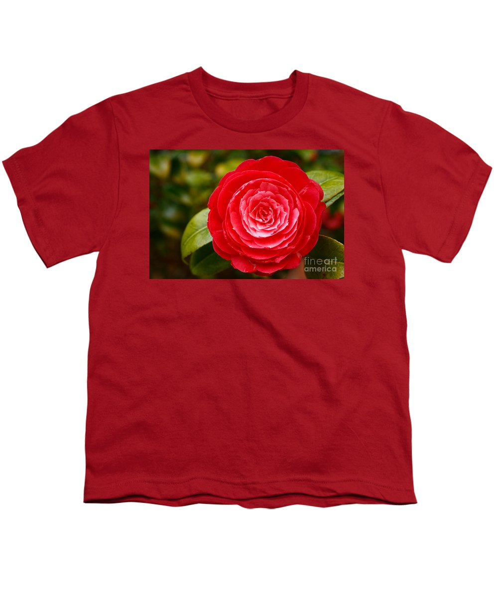 Azores Youth T-Shirt featuring the photograph Camellia Japonica by Gaspar Avila