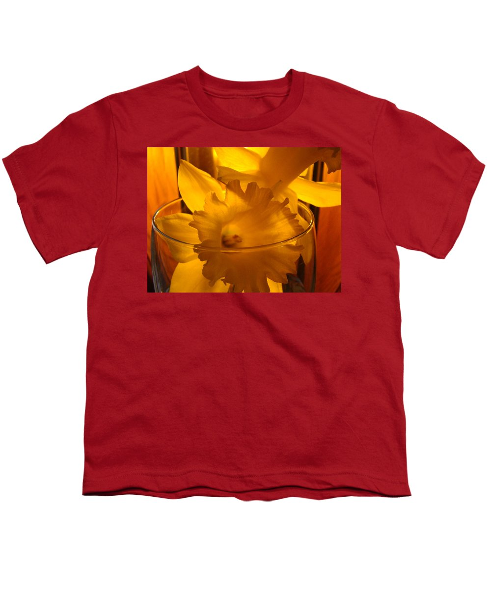 �daffodils Artwork� Youth T-Shirt featuring the photograph Daffodiil Flowers Evening Glow 9 Contemporary Modern Art Print Giclee by Baslee Troutman