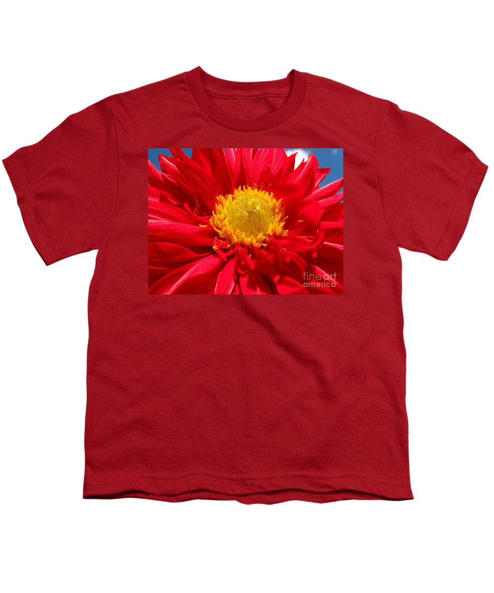 Dhalia Youth T-Shirt featuring the photograph Dhalia by Amanda Barcon
