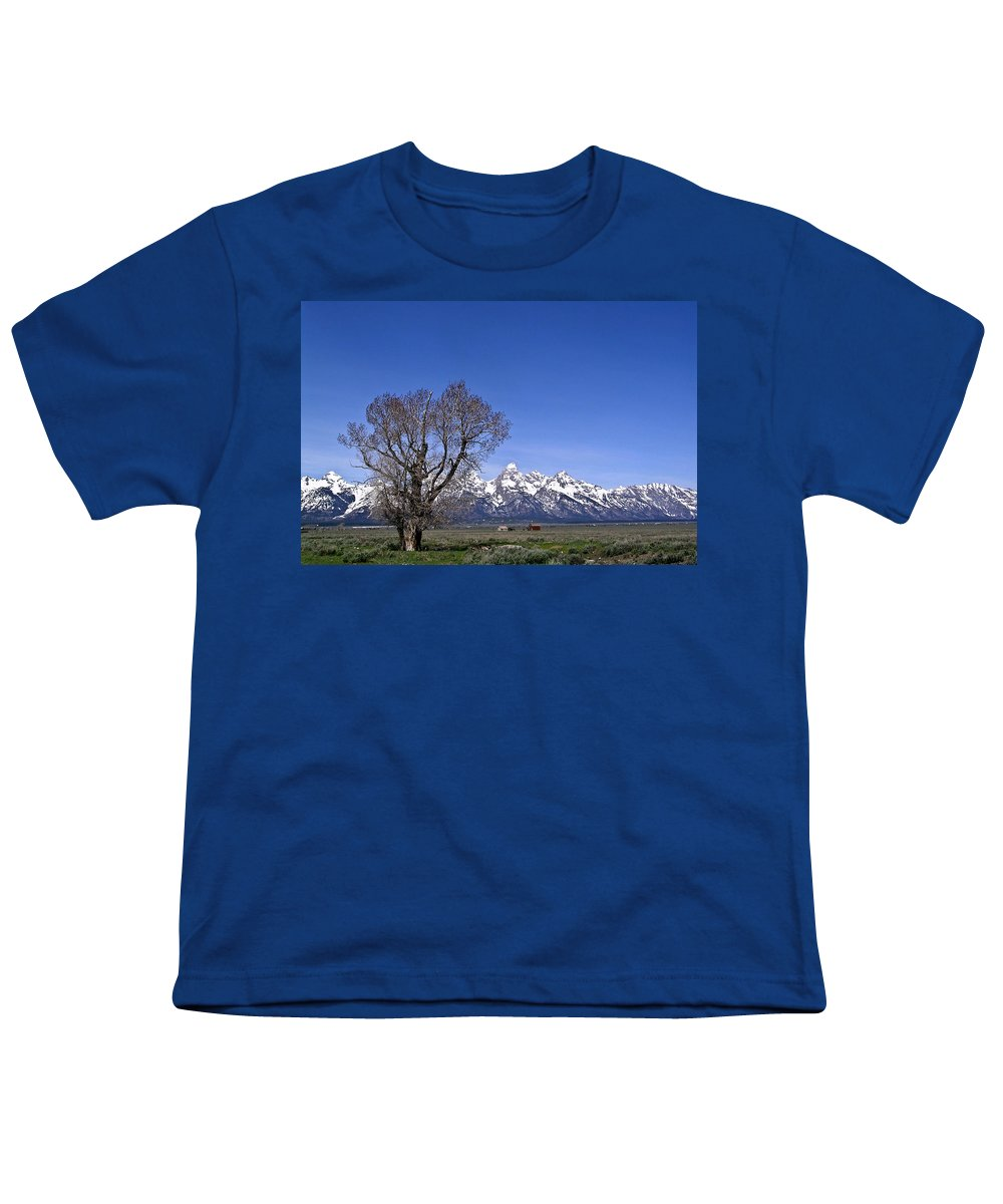 Tree Youth T-Shirt featuring the photograph Lone Tree At Tetons by Douglas Barnett