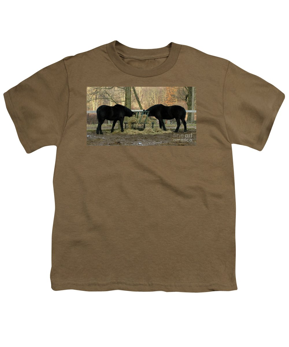 Horse Youth T-Shirt featuring the photograph Barnyard Beauties by Ann Horn