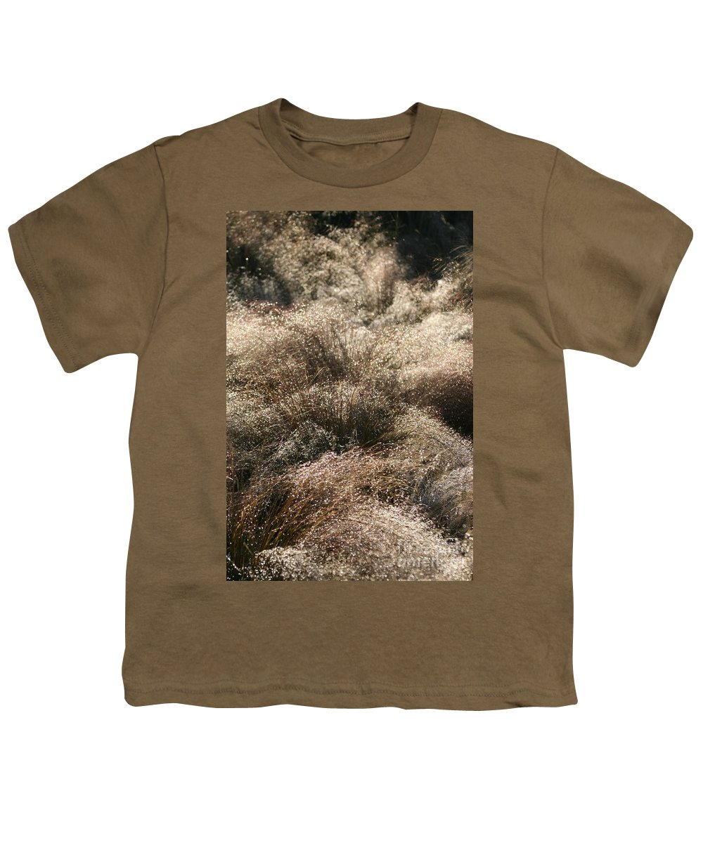 Grasses Youth T-Shirt featuring the photograph Sparkling Grasses by Nadine Rippelmeyer