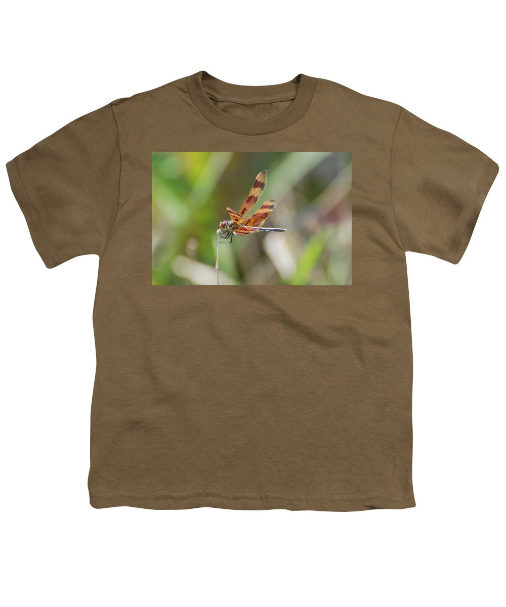 Nature Youth T-Shirt featuring the photograph Dragon Fly by Rob Hans