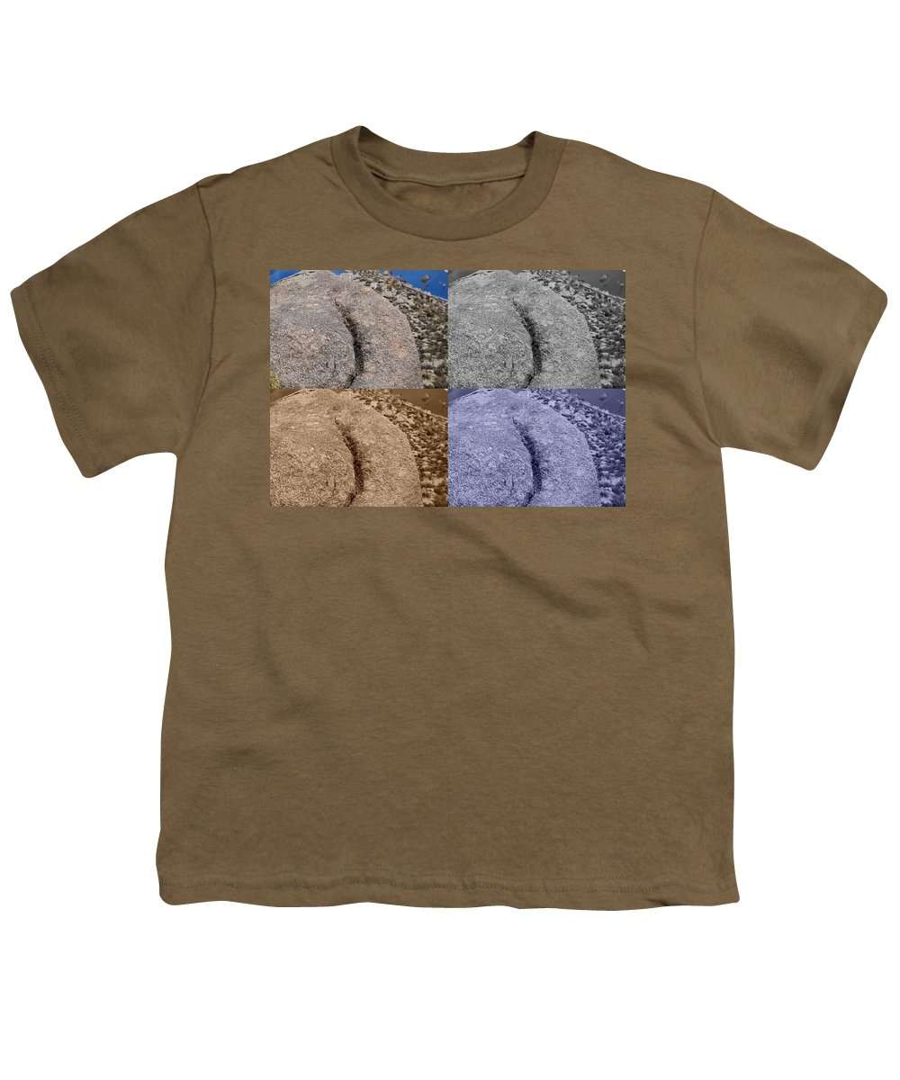 Sepia Youth T-Shirt featuring the photograph 4 Crack Rocks New Mexico by Rob Hans