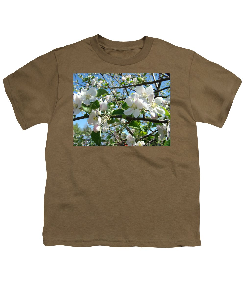 �blossoms Artwork� Youth T-Shirt featuring the photograph Apple Blossoms Art Prints 60 Spring Apple Tree Blossoms Blue Sky Landscape by Baslee Troutman