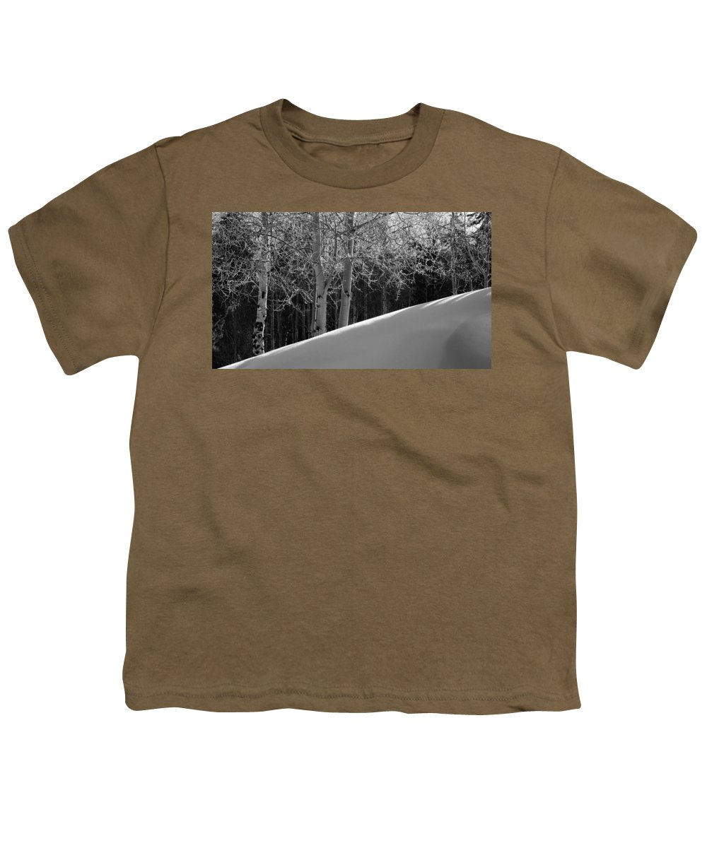 Colorado Youth T-Shirt featuring the photograph Aspencade by Skip Hunt