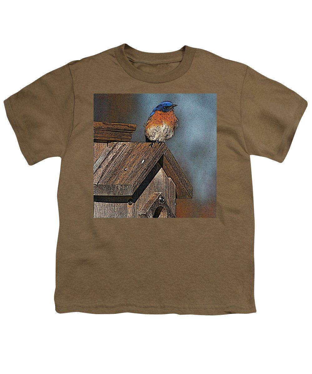 Blue Bird Youth T-Shirt featuring the photograph Blue Bird Songs by Robert Pearson
