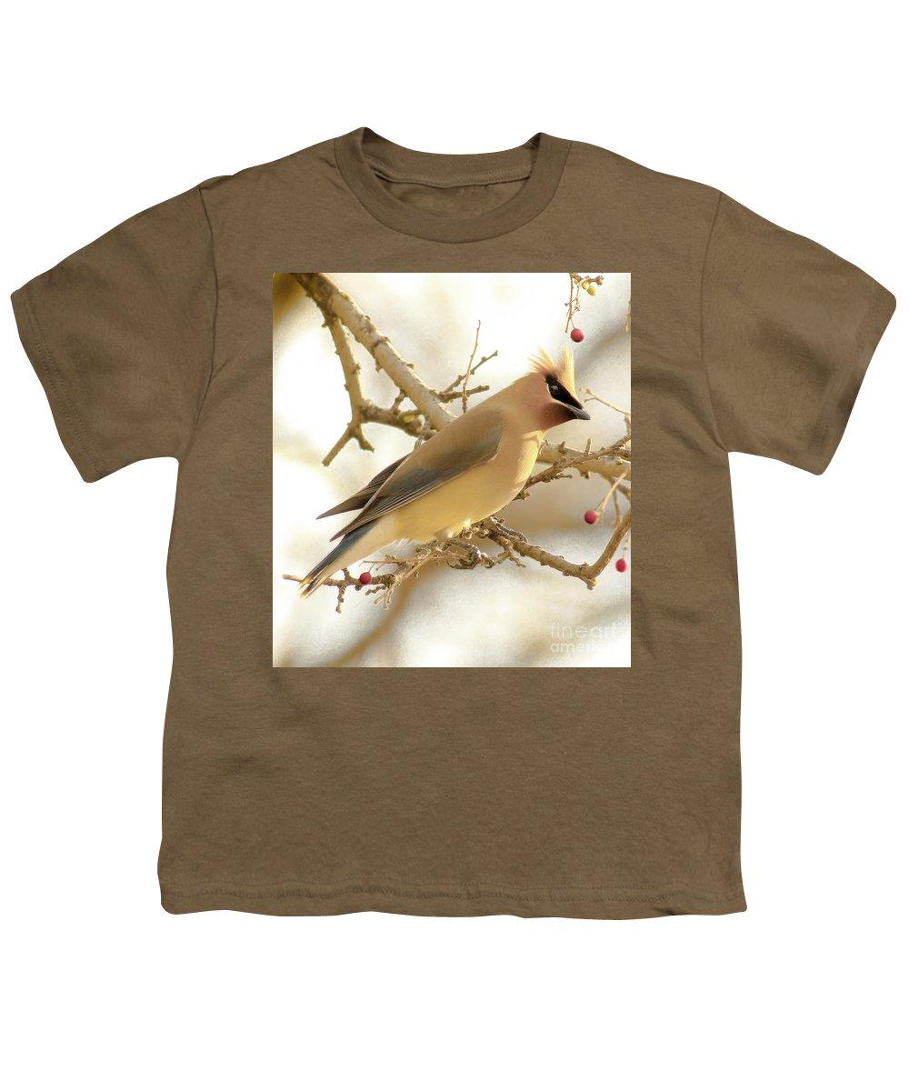 Cedar Waxing Youth T-Shirts