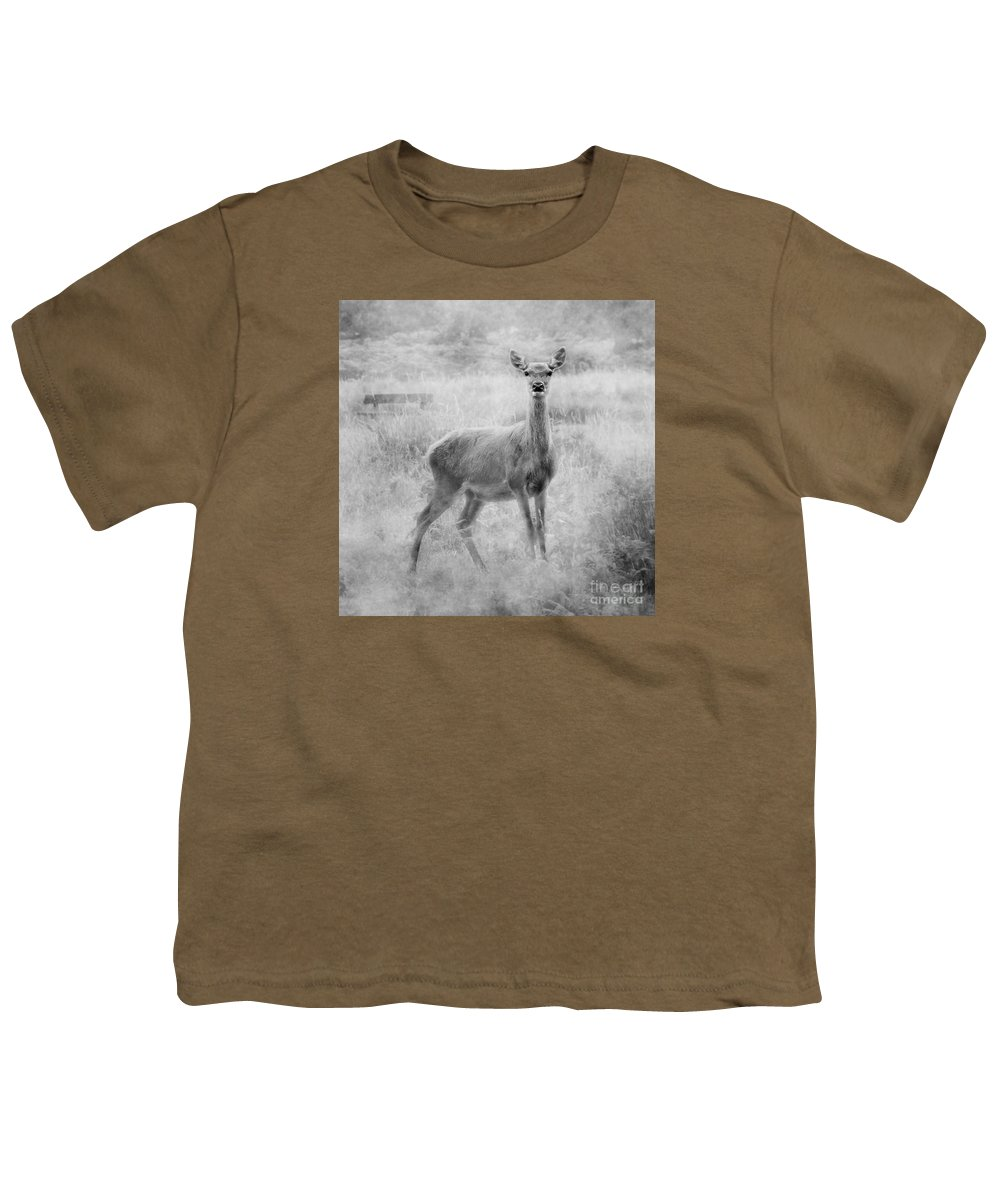 Doe Youth T-Shirt featuring the photograph Doe A Deer A Female Deer In Mono by Linsey Williams