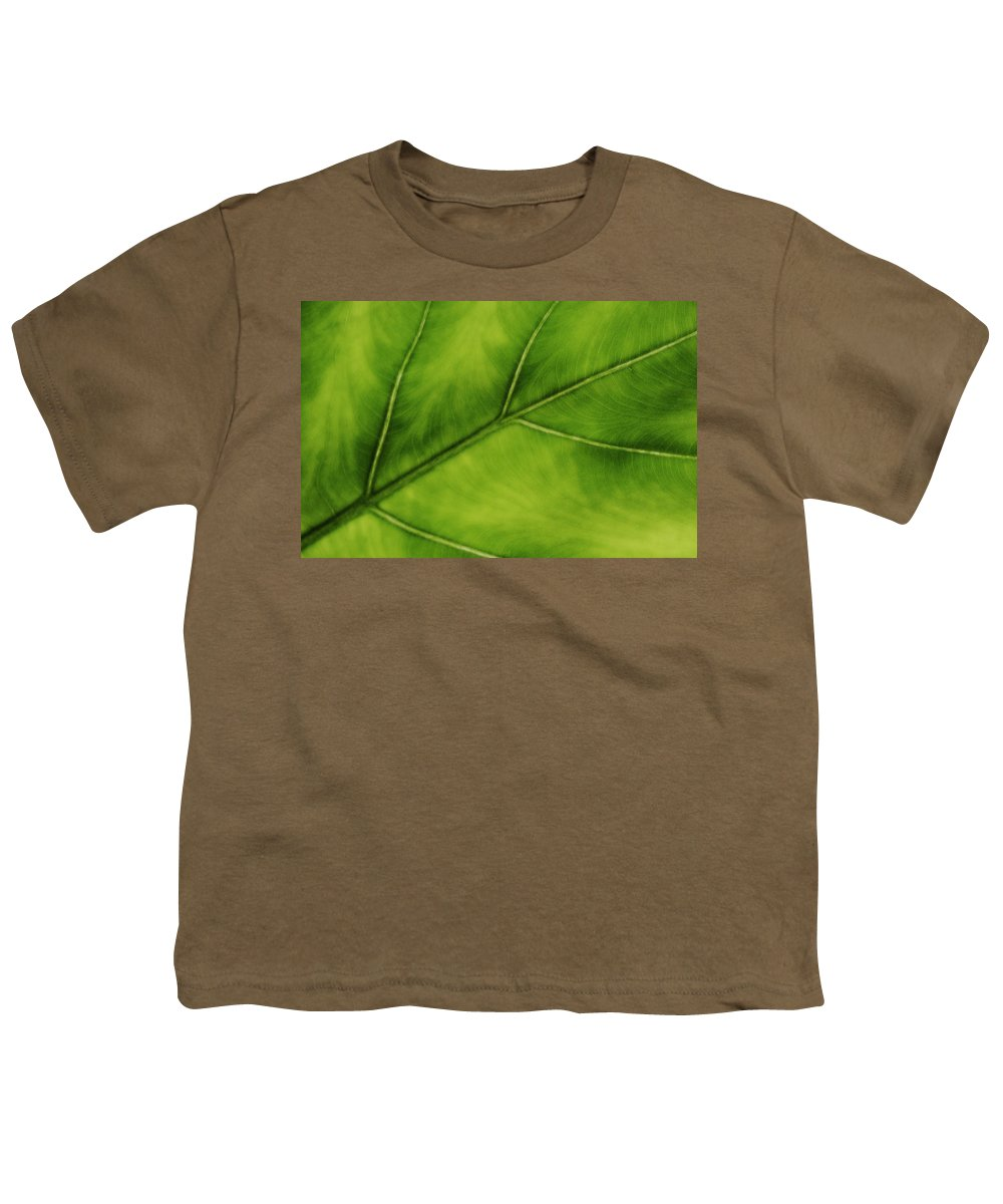 Leaf Youth T-Shirt featuring the photograph Elephant Ear by Marilyn Hunt