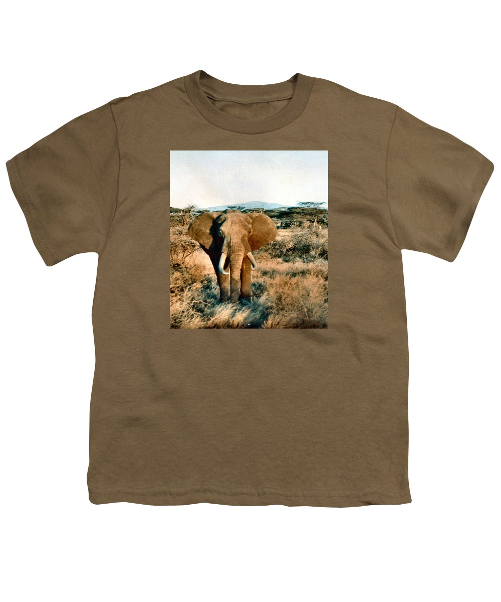 Elephant Youth T-Shirt featuring the photograph Elephant Eyes by Lin Grosvenor