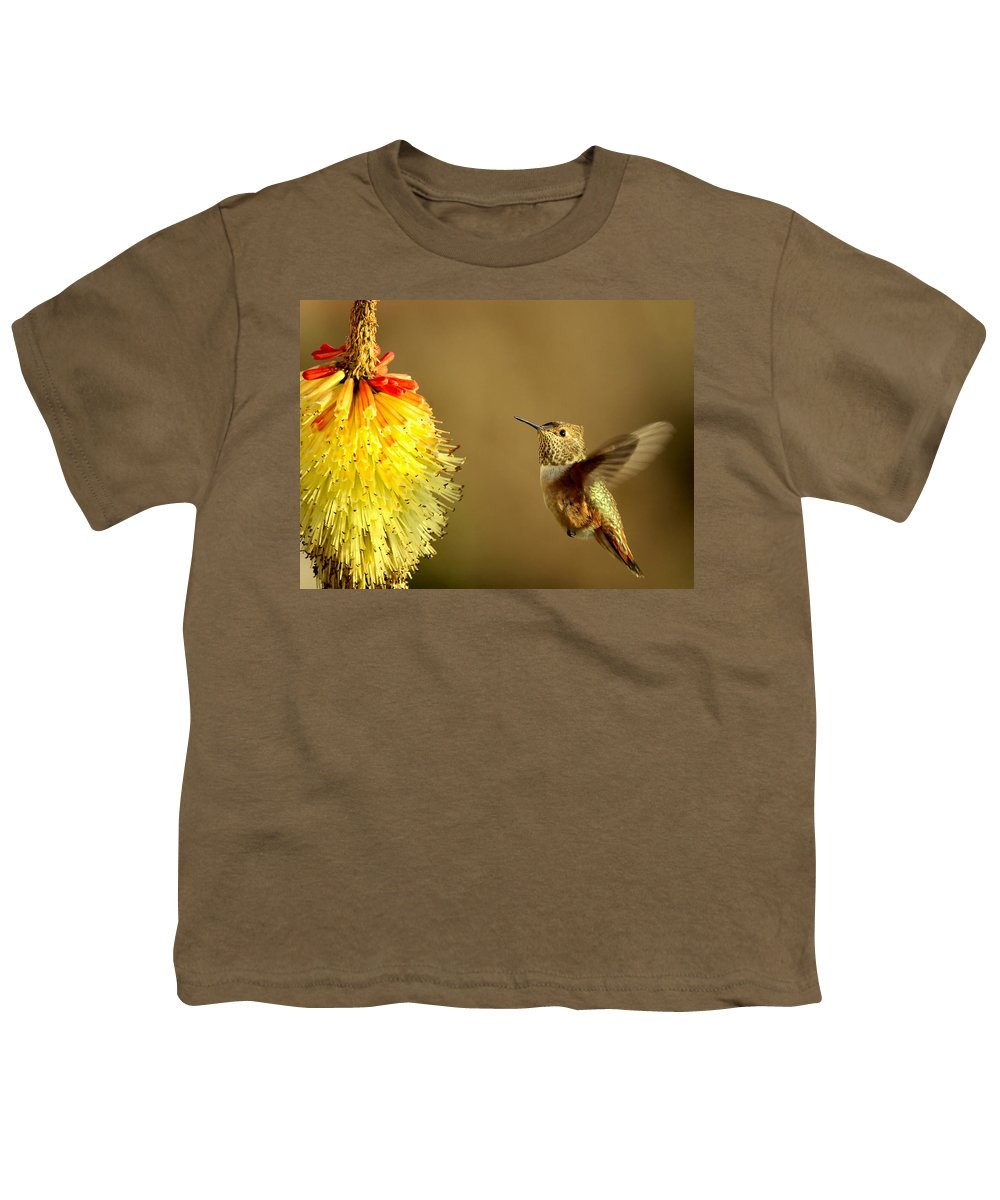 Hummingbird Youth T-Shirt featuring the photograph Flight Of The Hummer by Mike Dawson