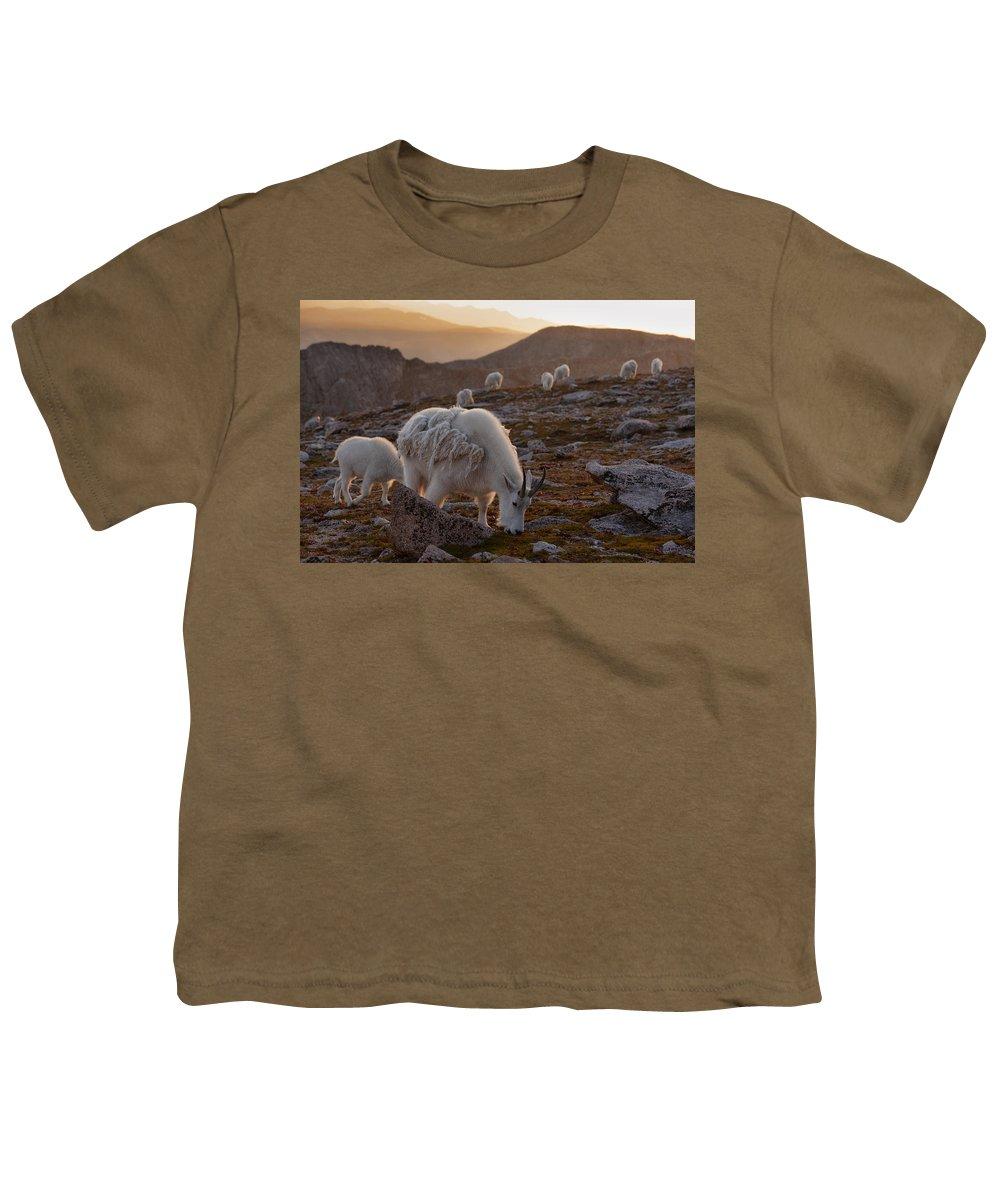 Fourteener Youth T-Shirts