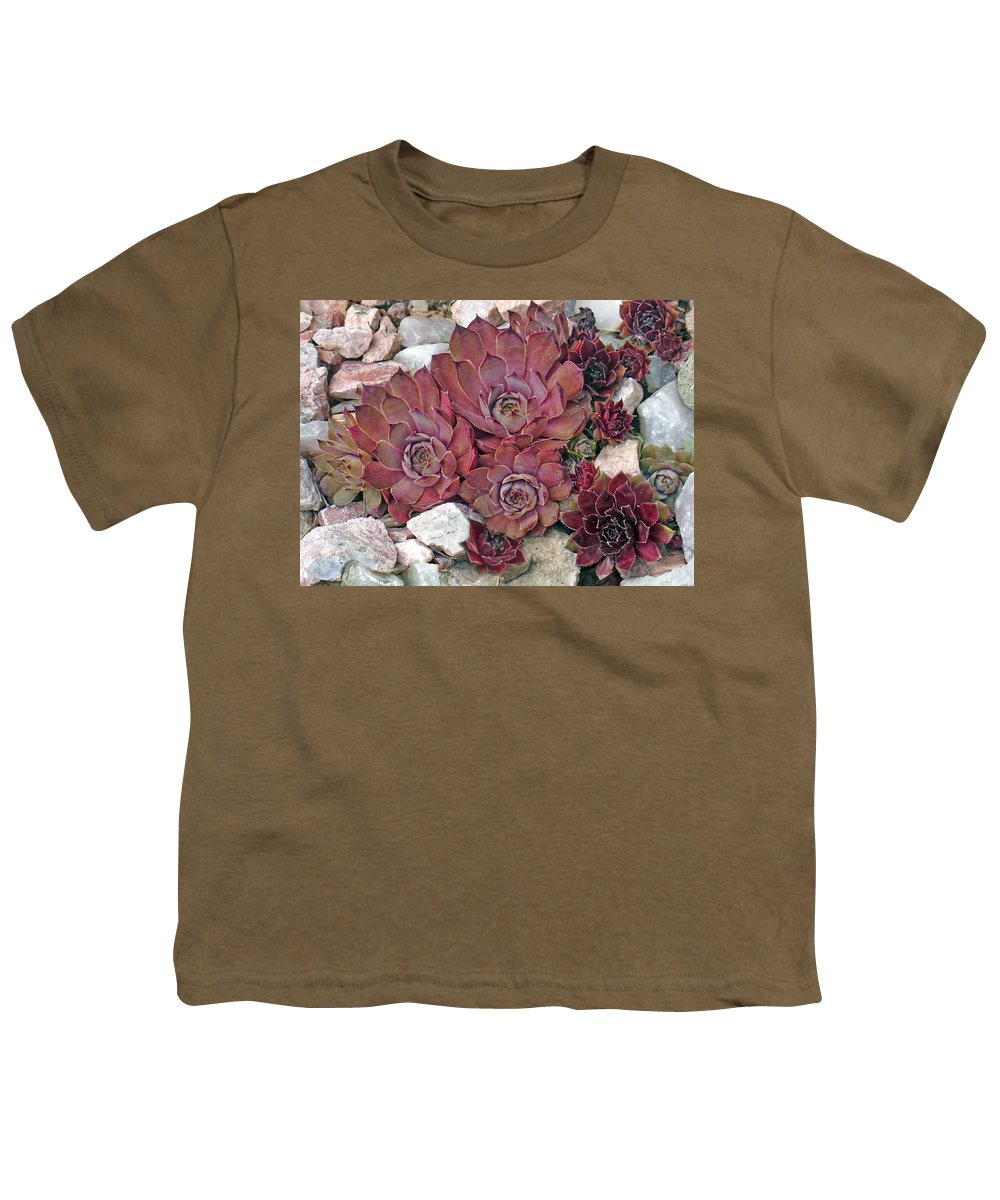 Landscape Youth T-Shirt featuring the photograph Hens And Chickens by Steve Karol