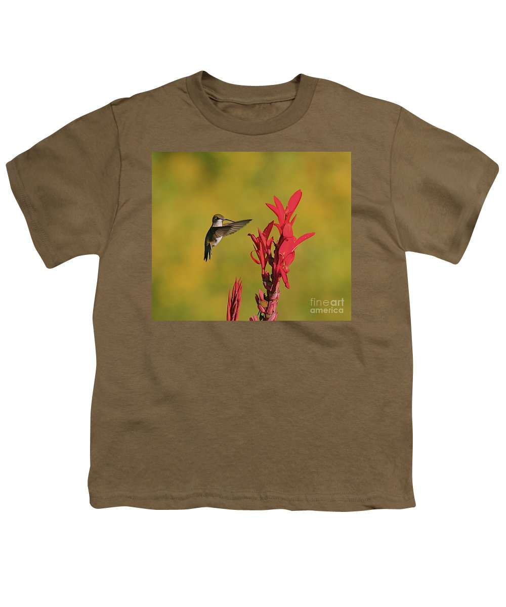 Humming Bird Youth T-Shirt featuring the photograph Hummer by Robert Pearson
