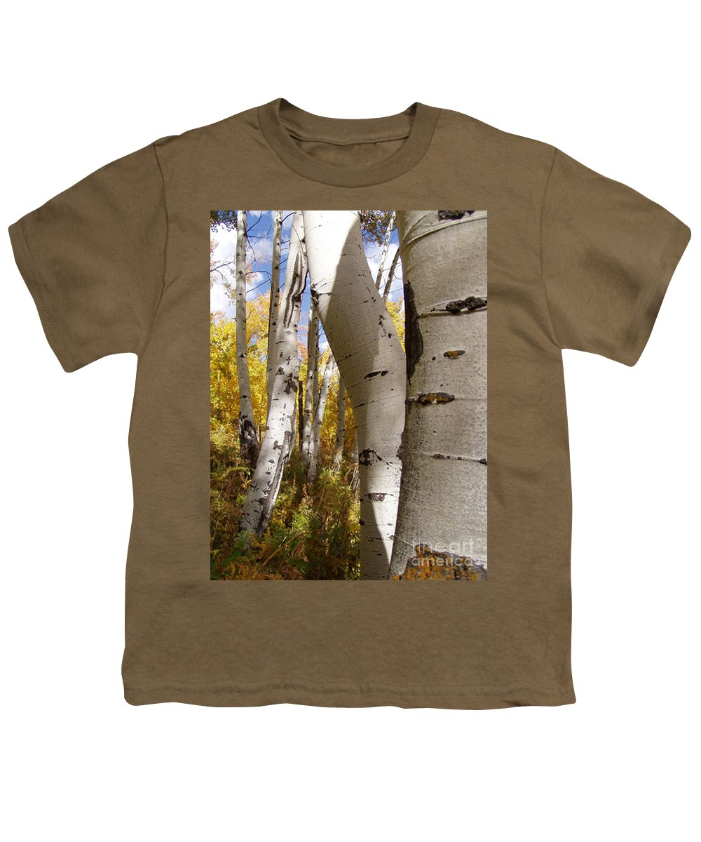 Trees Youth T-Shirt featuring the photograph Jackson Hole Wyoming by Amanda Barcon