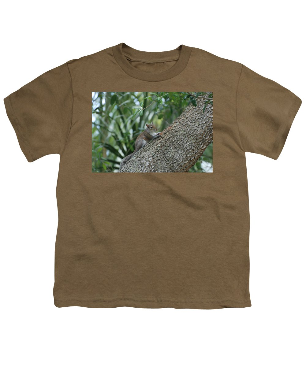 Squirrels Youth T-Shirt featuring the photograph Just Chilling Out by Rob Hans
