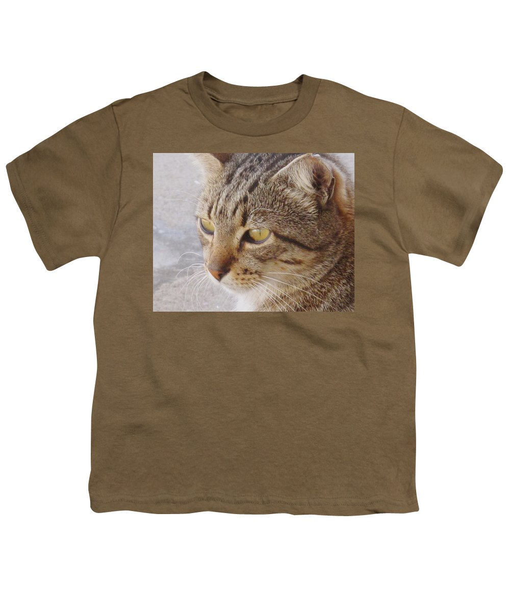 Cat Youth T-Shirt featuring the photograph King Cat by Ian MacDonald