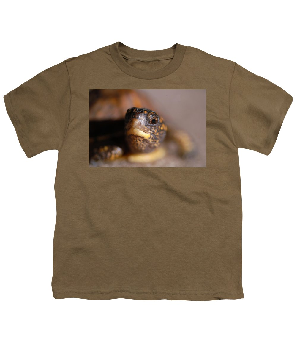 Clay Youth T-Shirt featuring the photograph Lucky by Clayton Bruster