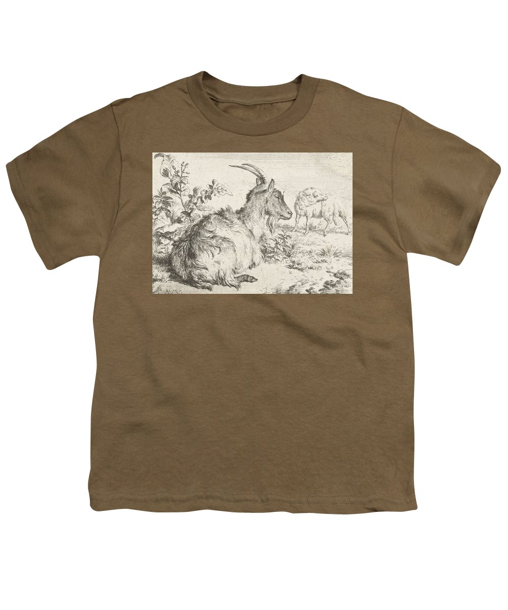 Goat Youth T-Shirt featuring the drawing Lying Goat by Adriaen van de Velde