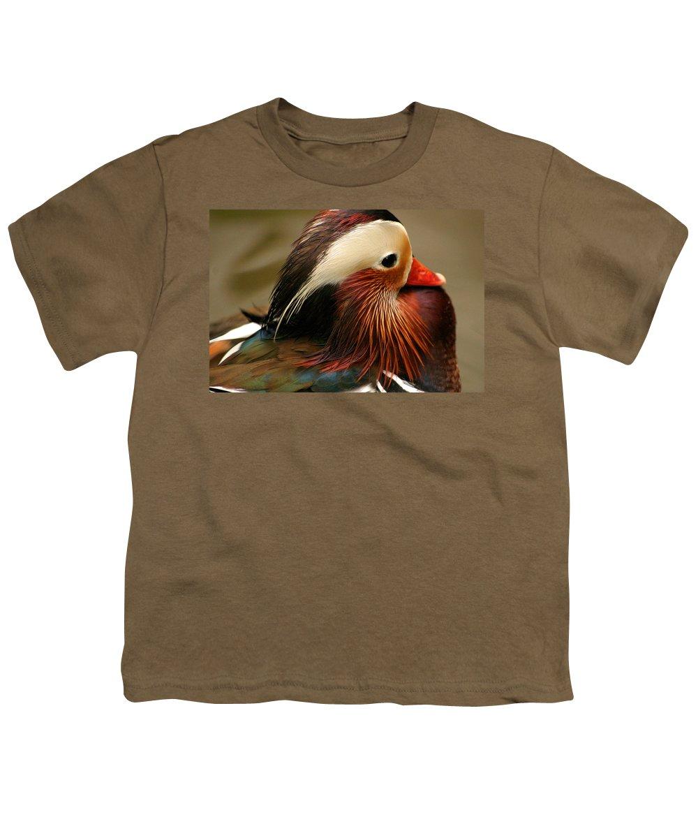 Mandarin Duck Youth T-Shirt featuring the photograph Male Mandarin Duck China by Ralph A Ledergerber-Photography