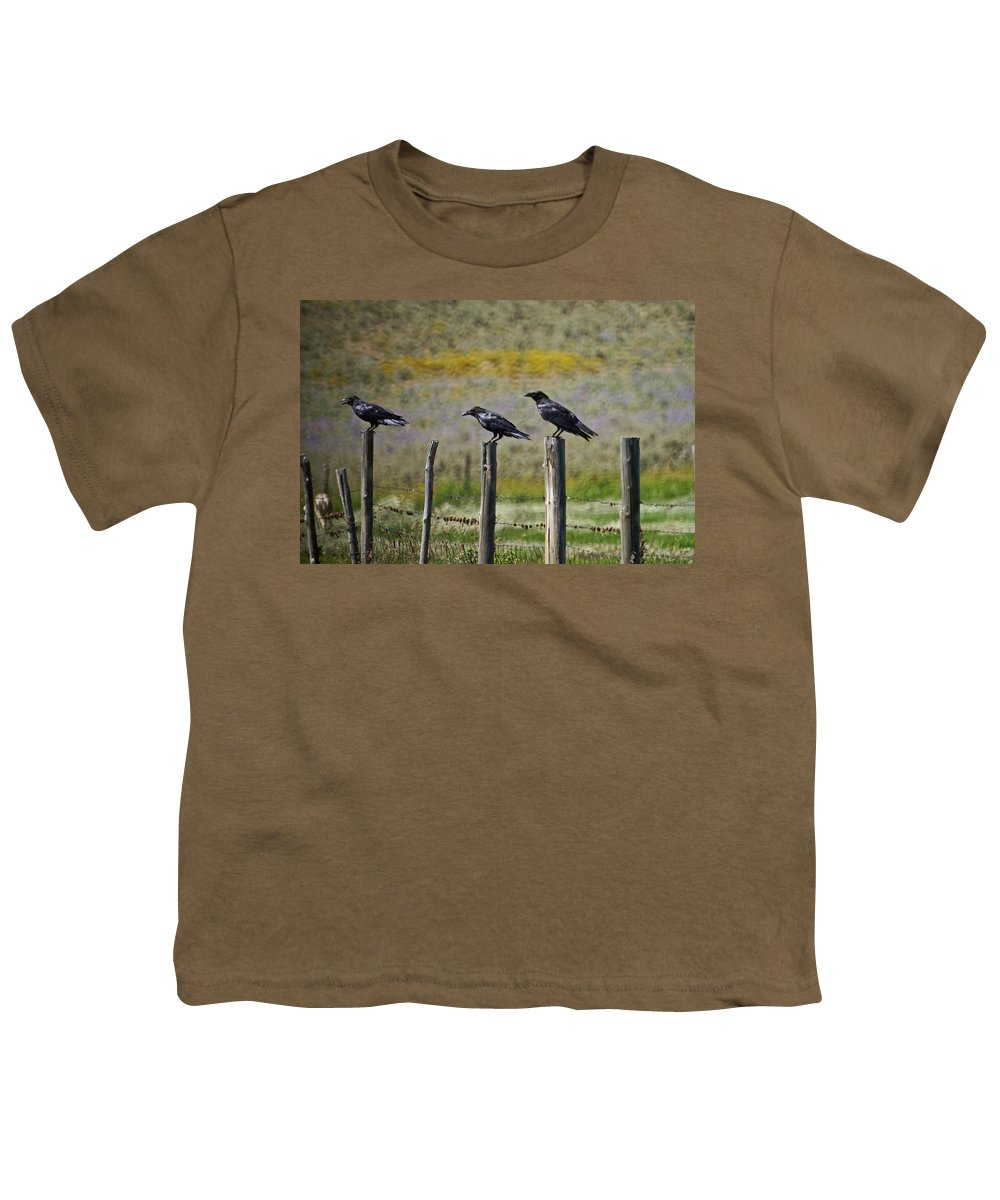 Crows Youth T-Shirt featuring the photograph Neighborhood Watch Crows by Heather Coen